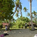 Colecting coconuts at Paingaimotu Is