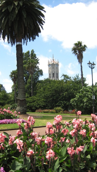 Clock Tower from Albert Park University of Auckland