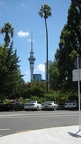 Sky Tower and Albert Park  from University of Auckland